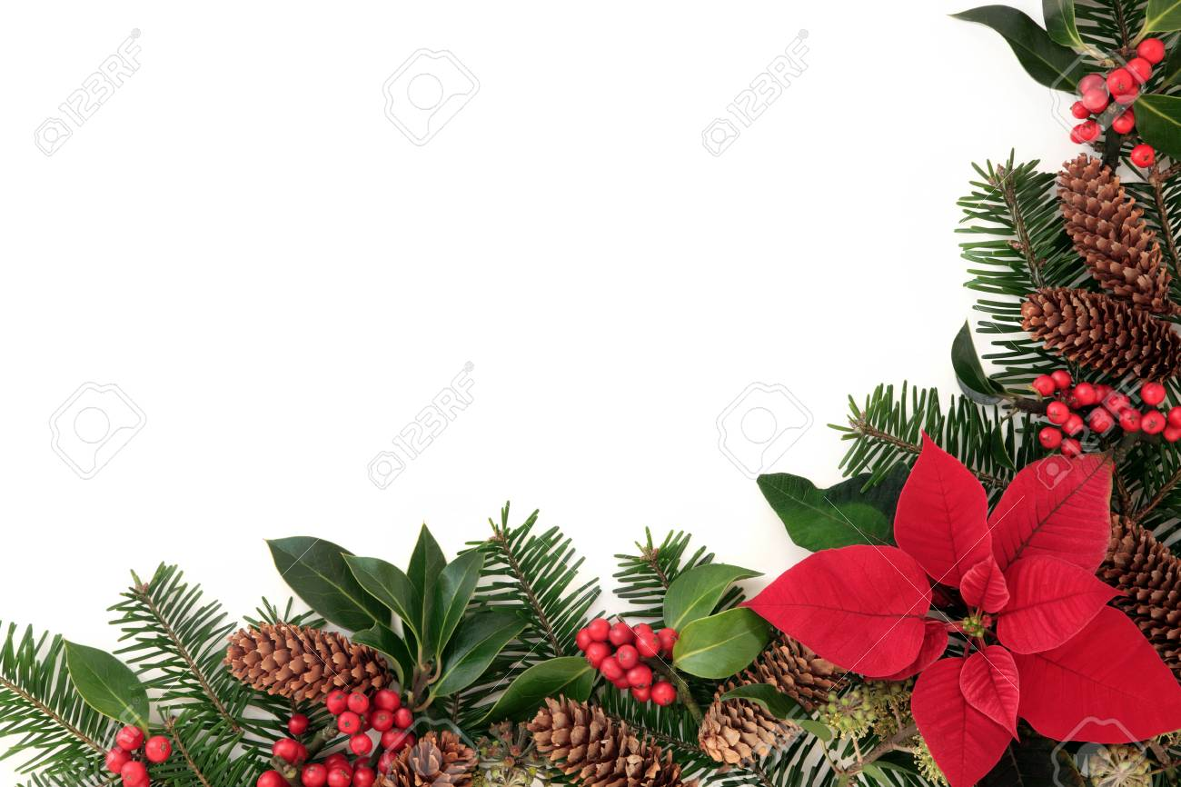 Christmas Floral Border With Poinsettia Flower Holly And Winter
