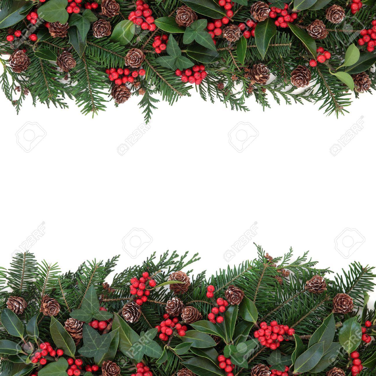 mistletoe border