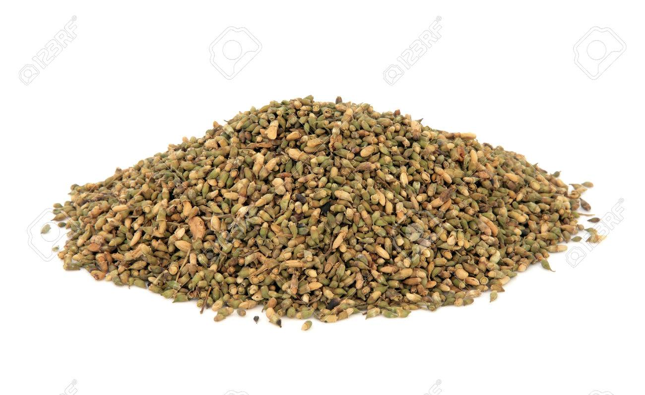 Pagoda Tree Flower Bud Herb Used In Chinese Herbal Medicine