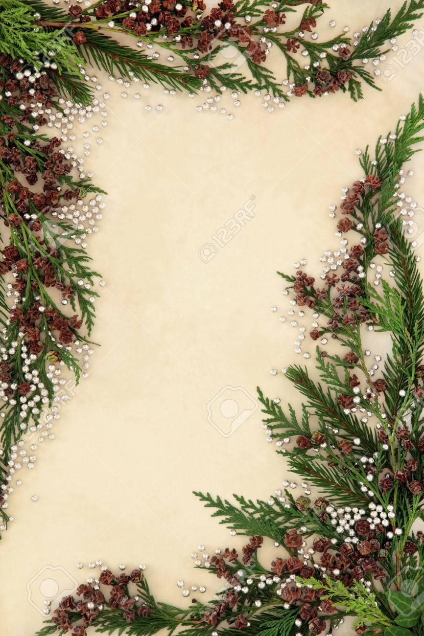 Cedar Zypressen Abstrakten Hintergrund Rahmen Mit Silbernen ...