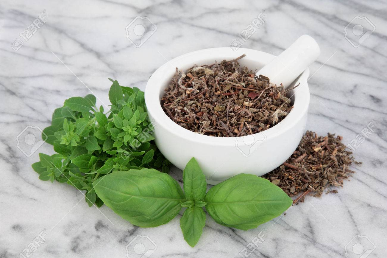Fresh basil herb types with dried tulsi holy basil in a mortar with pestle over marble background. - 56213550