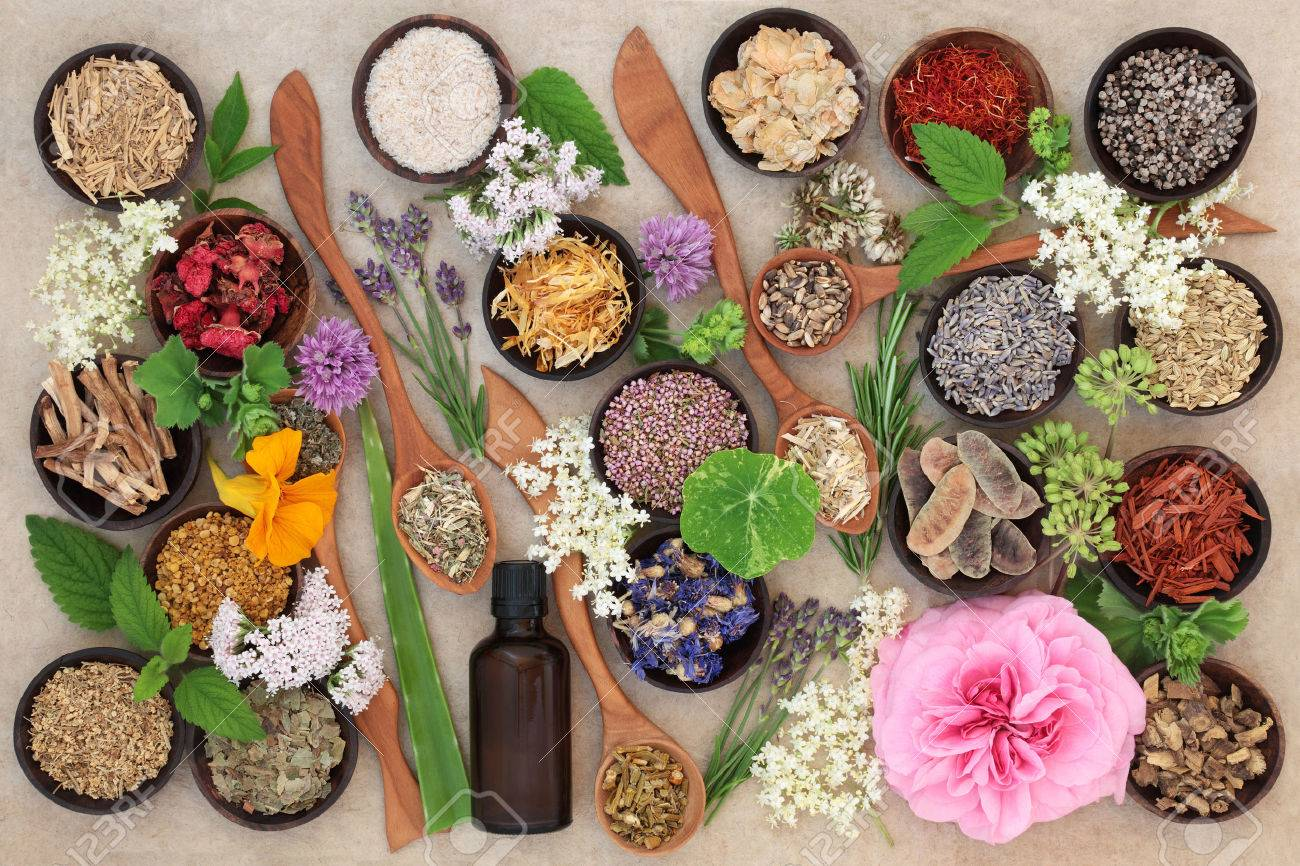 Flower and herb selection used in natural alternative herbal medicine in wooden spoons and bowls with essential oil bottle on hemp paper background. - 65881866
