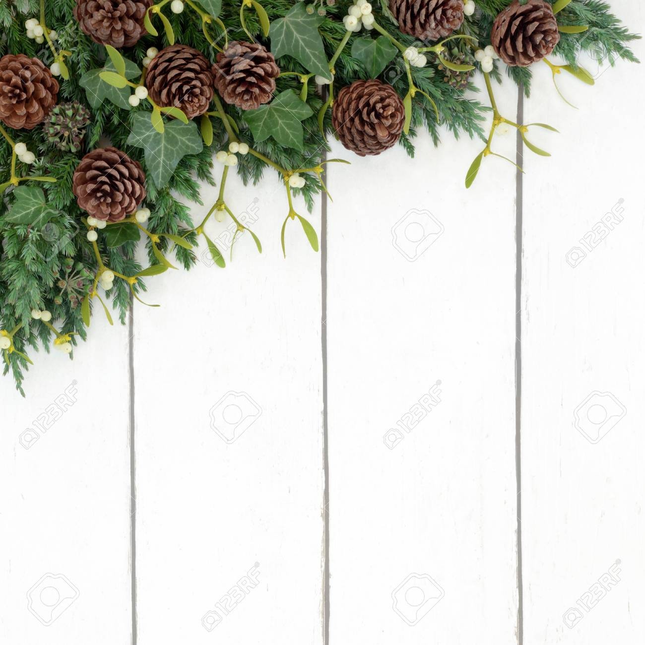 juniper fir mistletoe pine cone and ivy background winter border