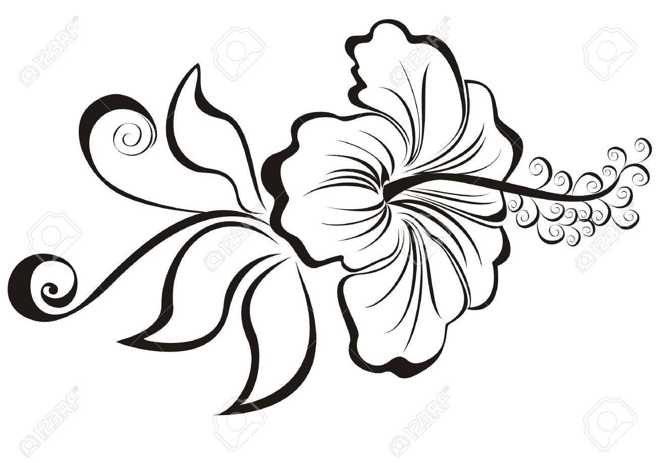 vector illustration hibiscus - 20225662