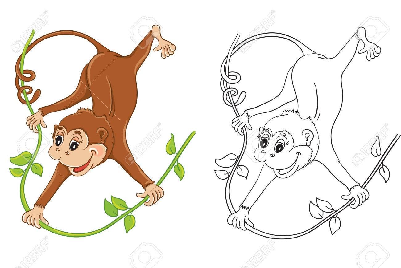 15 Dibujos Para Colorear De Animales Monos