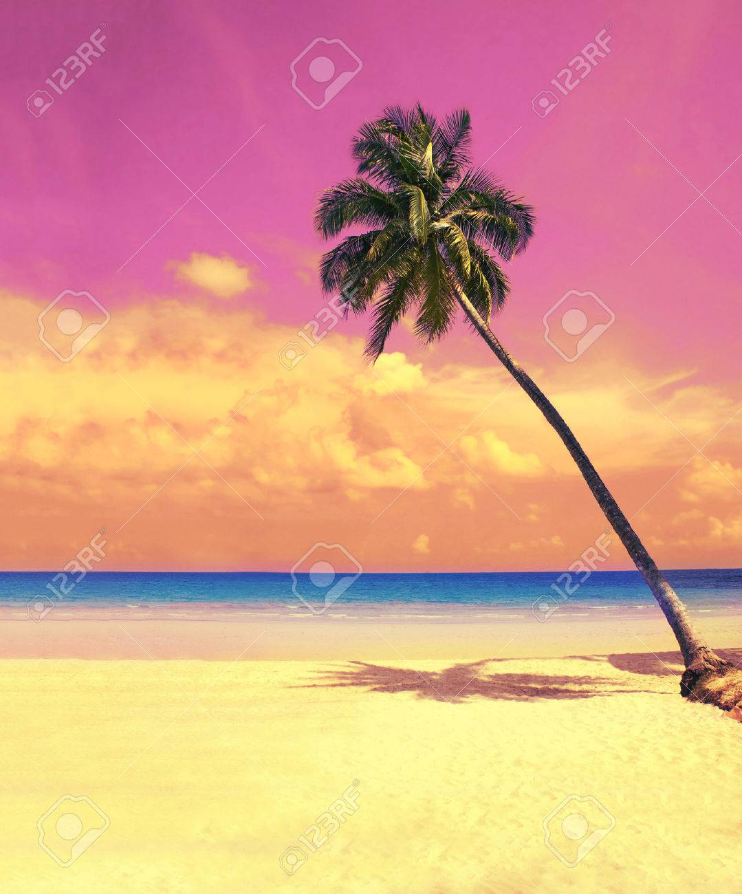 Paradise nature, palm tree over white sand beach on the tropical beach. Summer travel background with retro vintage filter. - 53586785