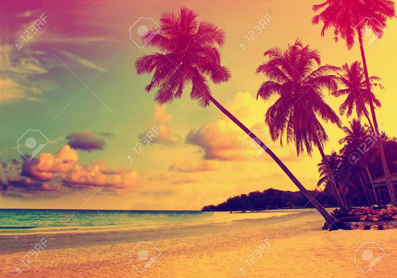 Beautiful tropical beach with silhouettes of palm trees at sunset - 53587027