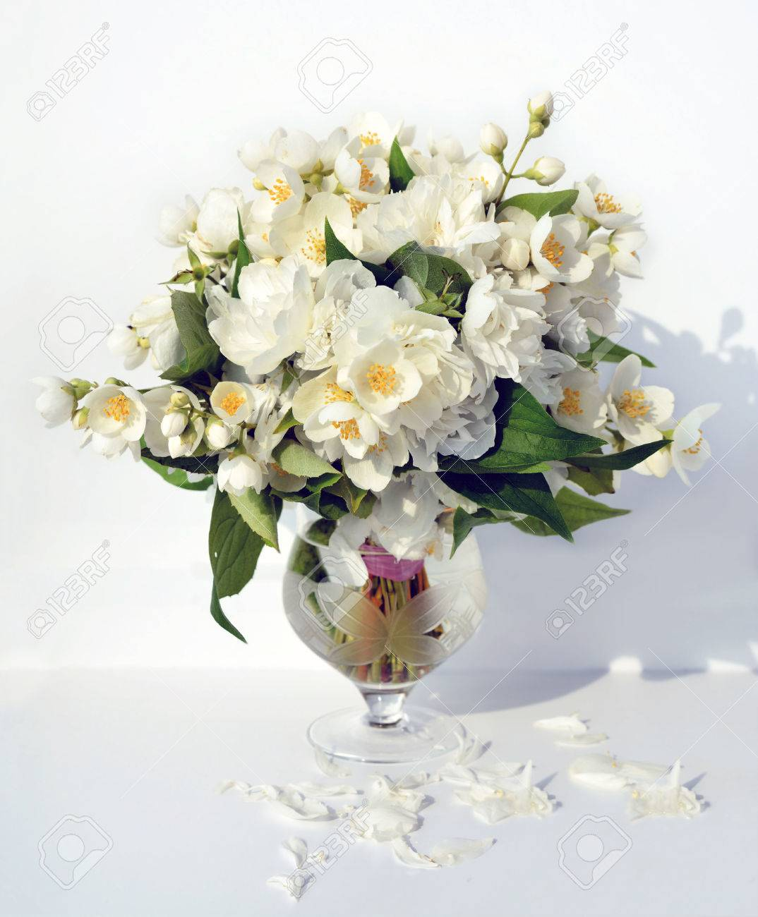 Beautiful fragrant bouquet of jasmine flowers in glass vase on..