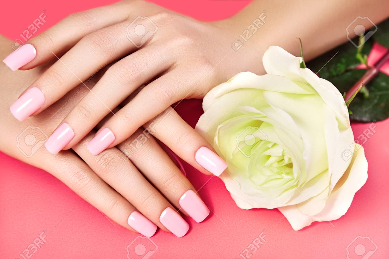 Manicured Nails With Pink Nail Polish. Manicure With Nailpolish ...