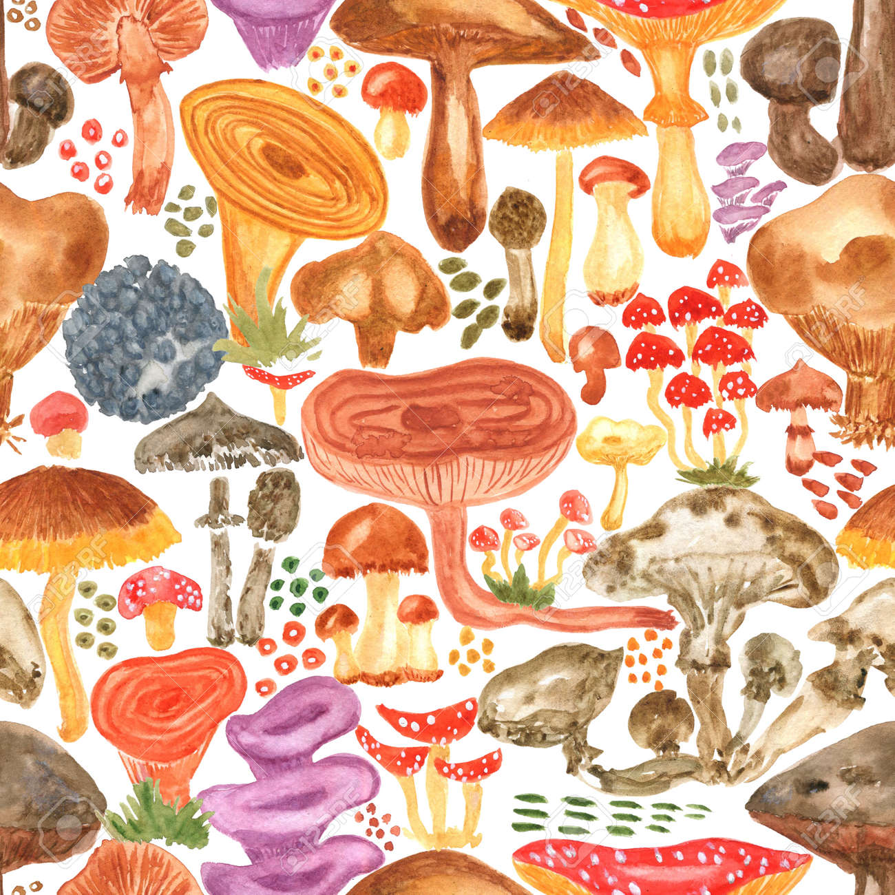 Colorful watercolor mushrooms seamless pattern. Hand Illustration for creating fabrics, wallpapers, gift wrapping paper, invitations, textile, scrapbooking. Isolated on white background. - 165387220