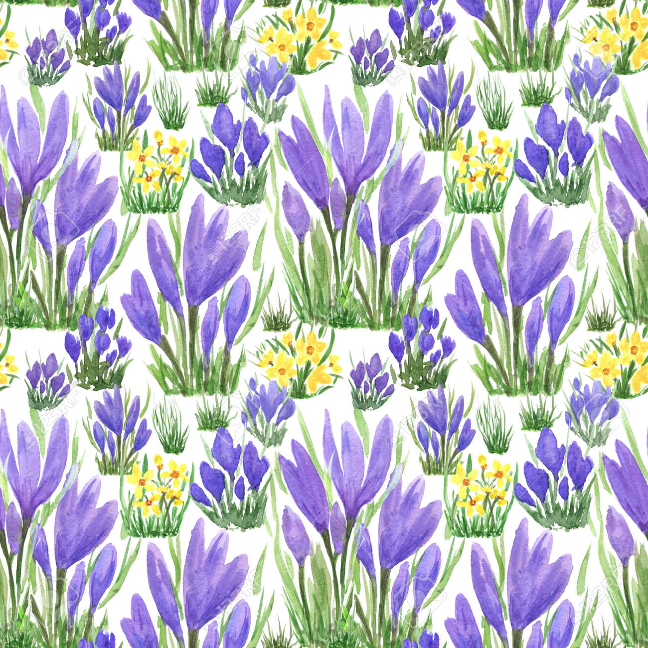 Waterclor colorful seamless pattern of spring flowers. Hand Illustration for creating fabrics, textile, decoupage, wallpapers, print, gift wrapping paper, invitations, textile, scrapbooking. Isolated on white background. - 165694549