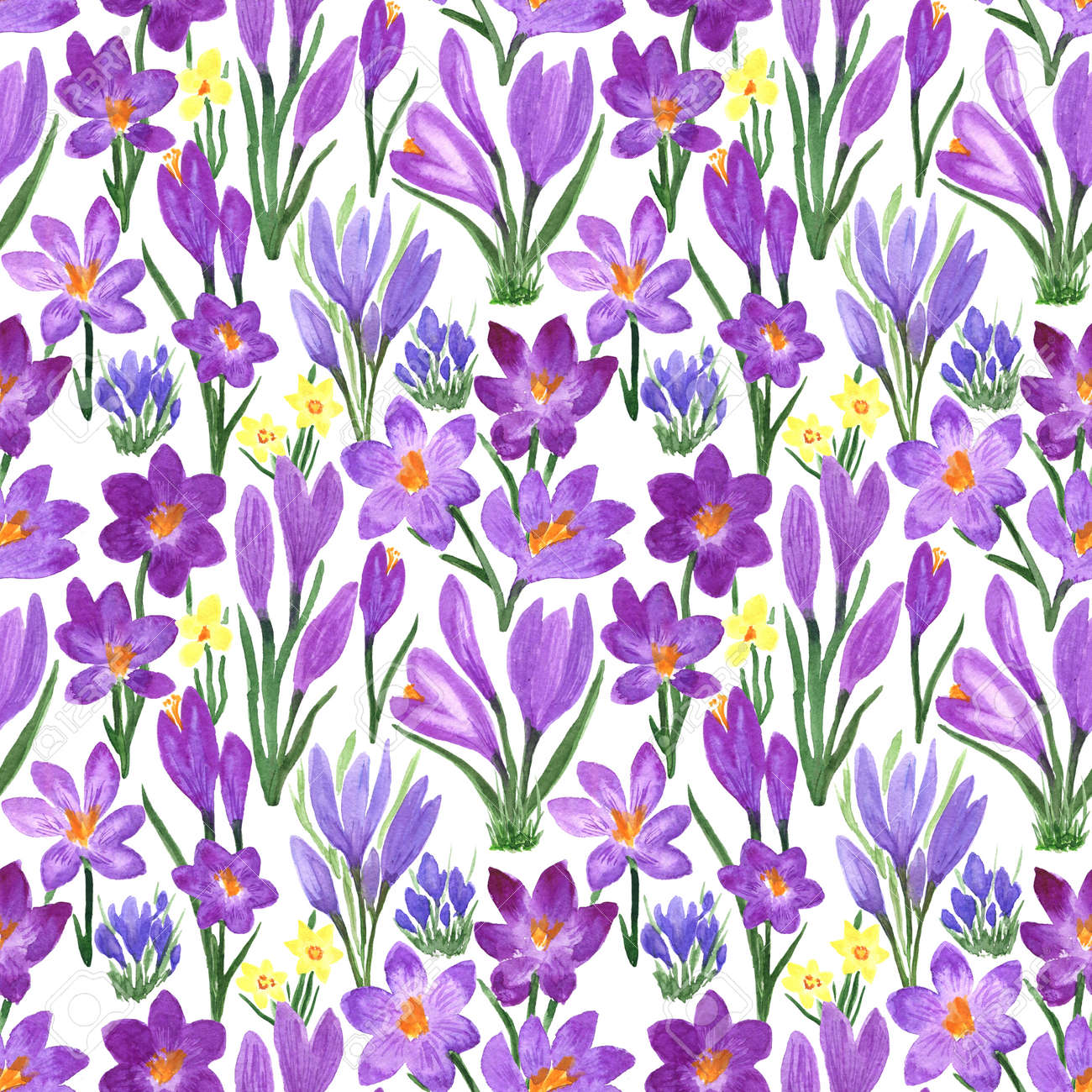 Waterclor colorful seamless pattern of spring flowers. Hand Illustration of primrose for creating fabrics, textile, decoupage, wallpapers, print, gift wrapping paper, invitations, textile. - 166064028
