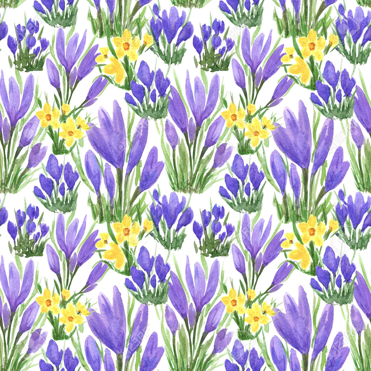 Waterclor colorful seamless pattern of spring flowers. Hand Illustration of primrose for creating fabrics, textile, decoupage, wallpapers, print, gift wrapping paper, invitations, textile. - 166064029