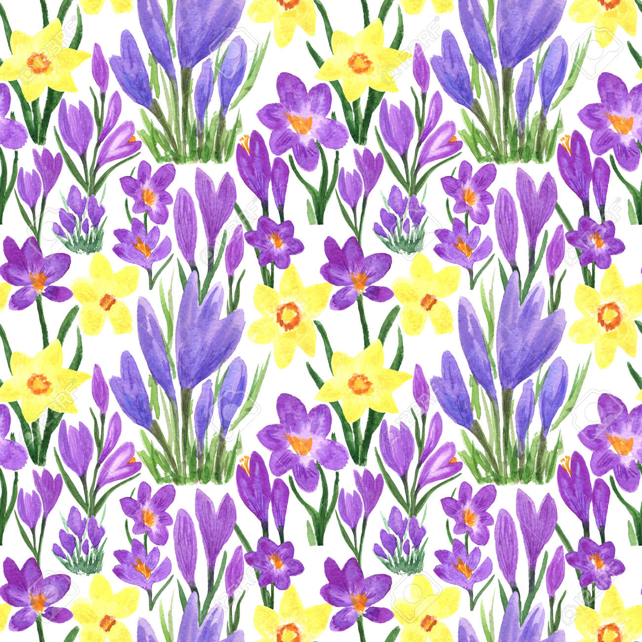 Waterclor colorful seamless pattern of spring flowers. Hand Illustration of primrose for creating fabrics, textile, decoupage, wallpapers, print, gift wrapping paper, invitations, textile. - 166801061