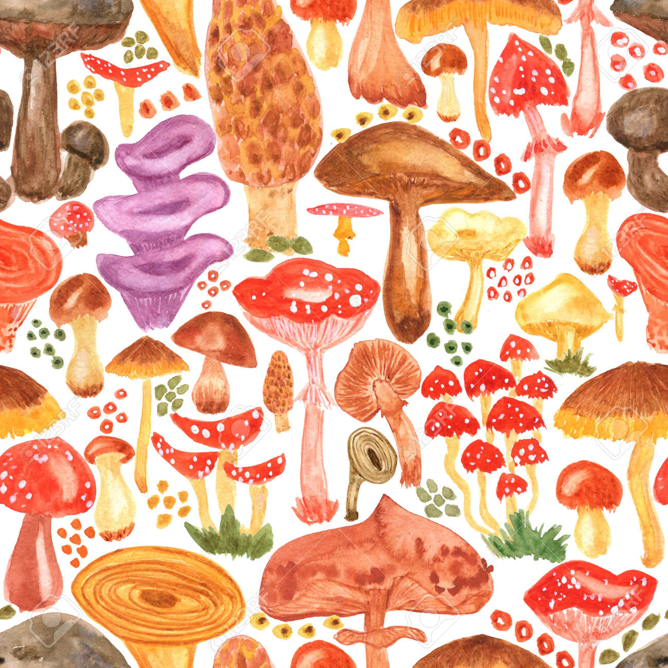 Colorful watercolor mushrooms seamless pattern. Hand Illustration for creating fabrics, wallpapers, gift wrapping paper, invitations, textile, scrapbooking. Isolated on white background. - 167408767