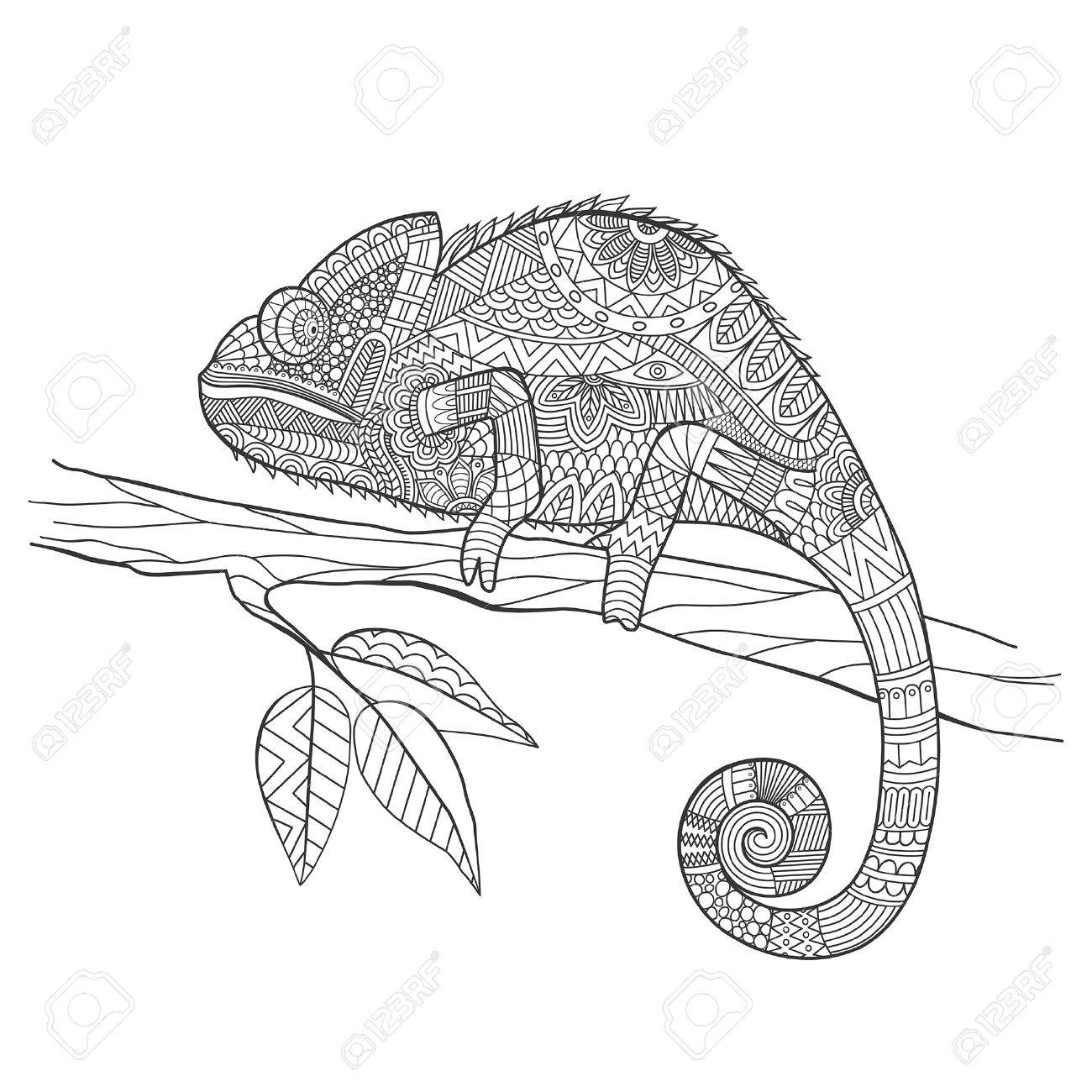 Hand Drawn Chameleon Zentangle Style For Coloring Bookshirt Design Effect Logotattoo