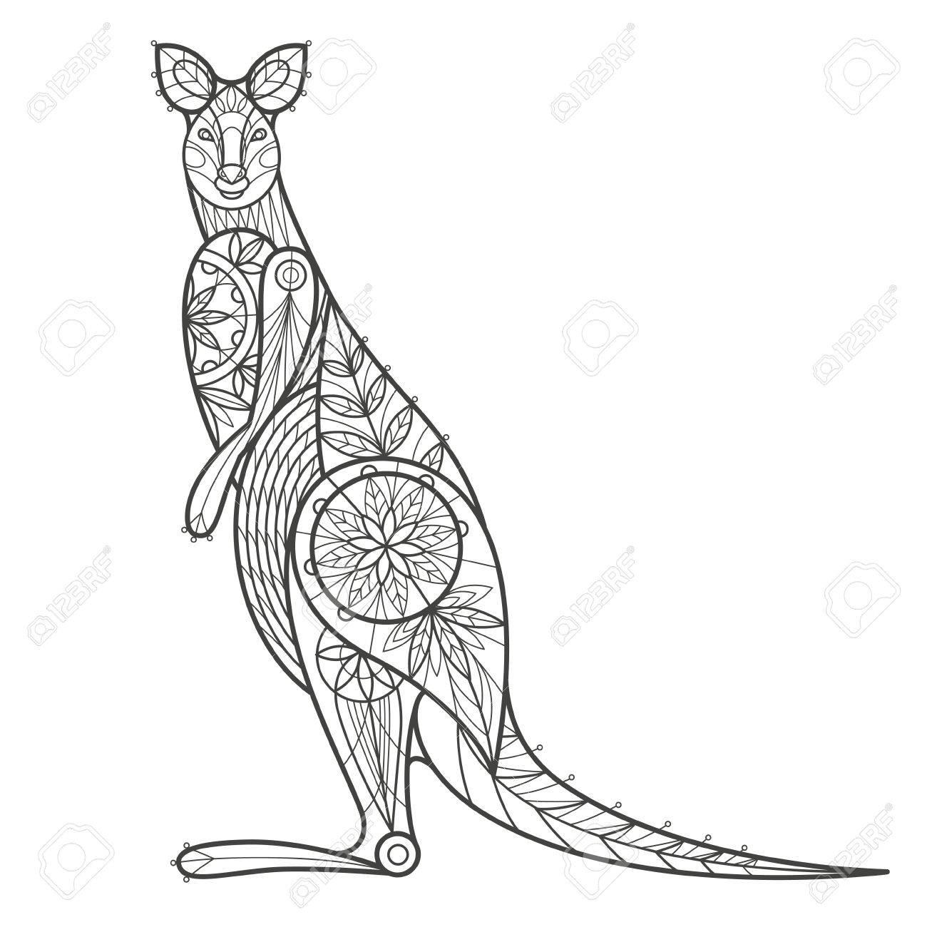 Ausgezeichnet Känguru Anatomie Weiblich Galerie - Anatomie Von ...
