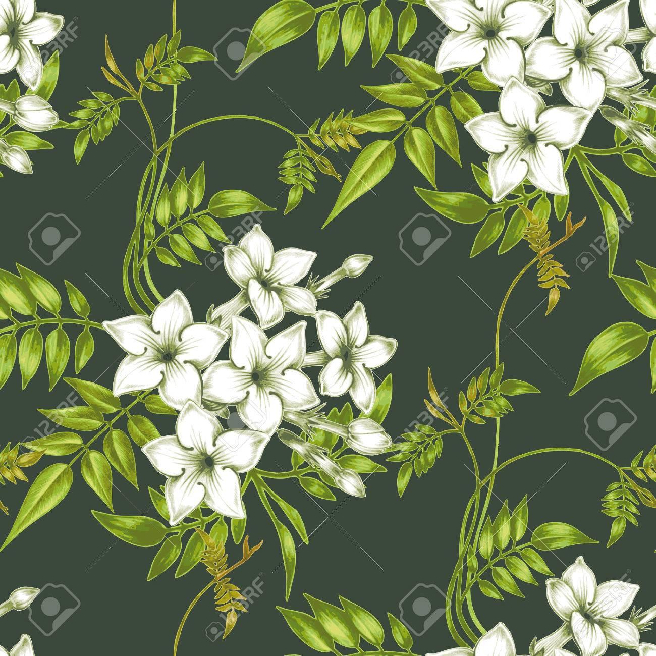 ベクターのシームレスな背景 ジャスミンの花 生地 織物 紙 壁紙 Web のデザイン ヴィンテージ 花の飾り のイラスト素材 ベクタ Image