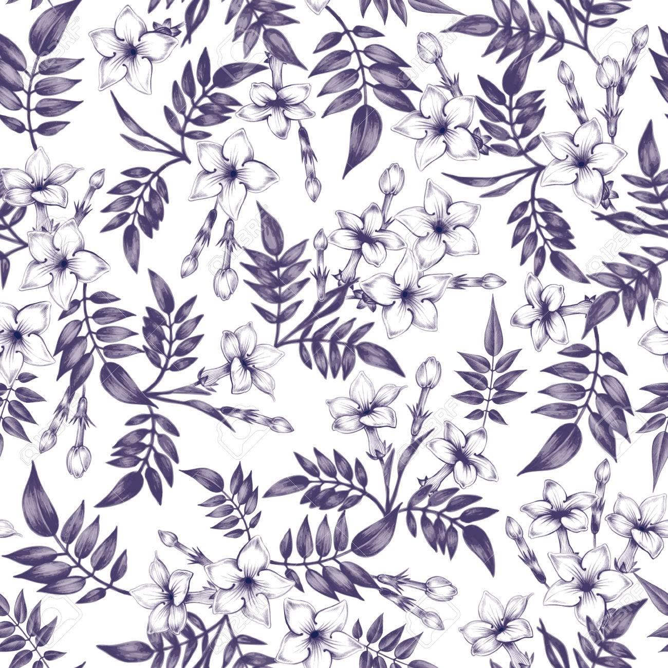ベクターのシームレスな背景 ジャスミンの花 生地 織物 紙 壁紙 Web のデザイン ヴィンテージ 花の飾り 黒と白 のイラスト素材 ベクタ Image