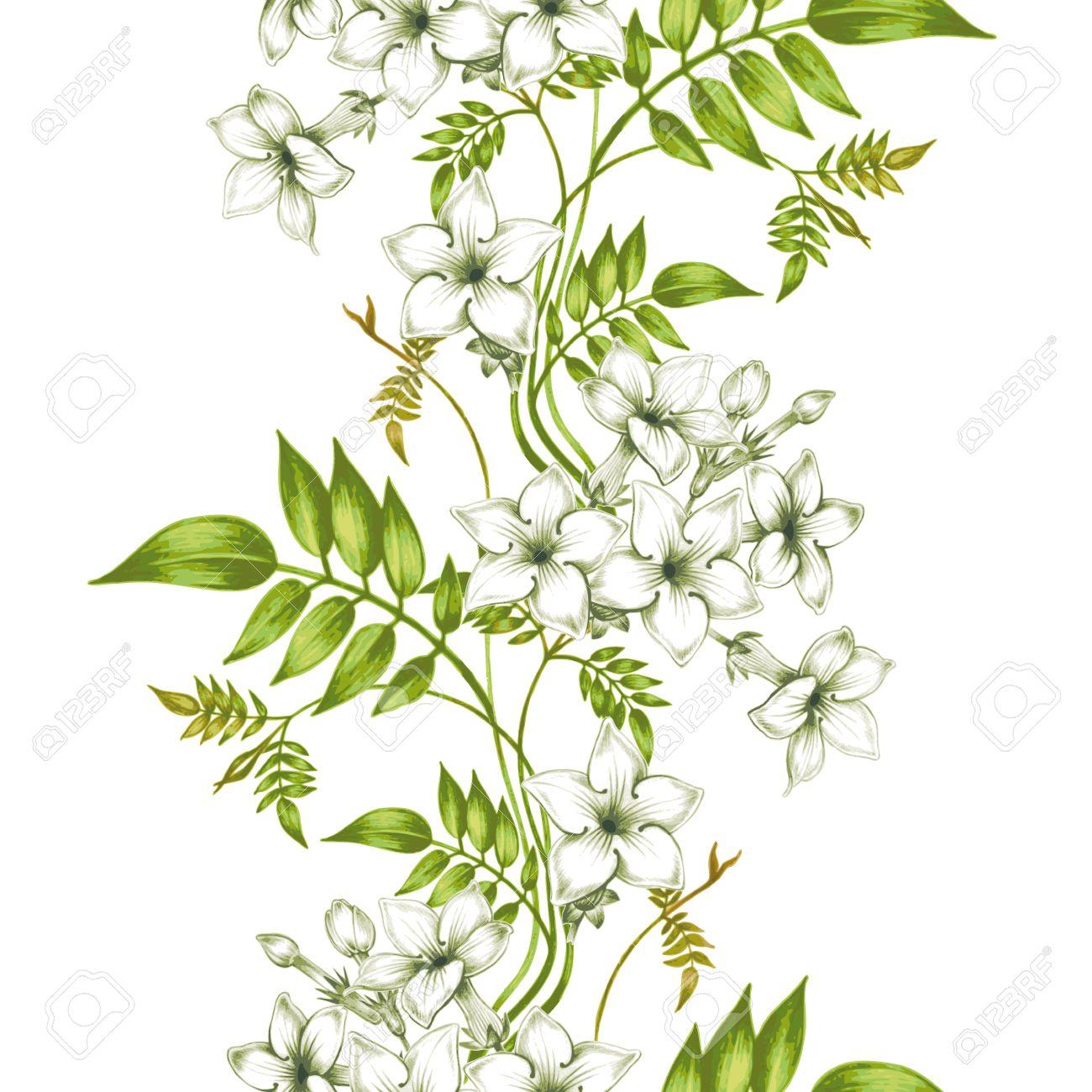 Vector seamless background jasmine flowerssign for fabrics jasmine flowerssign for fabrics textiles paper wallpaper izmirmasajfo Gallery