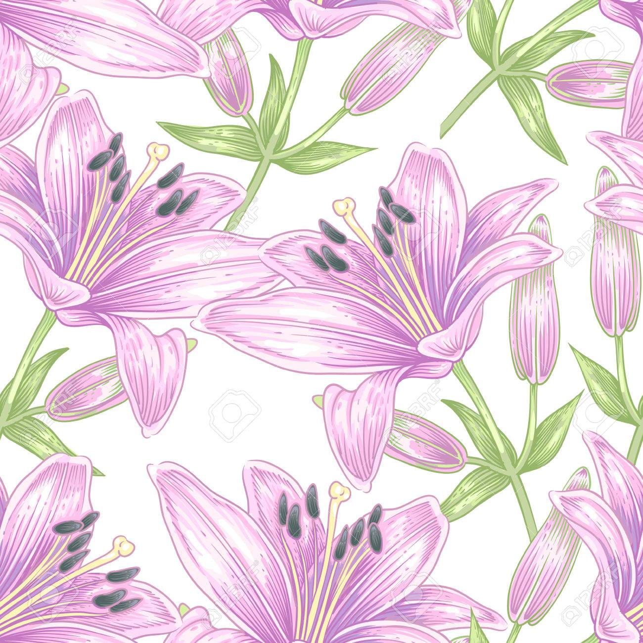 Seamless Vector Pattern Illustration Lily Flowers Designs For