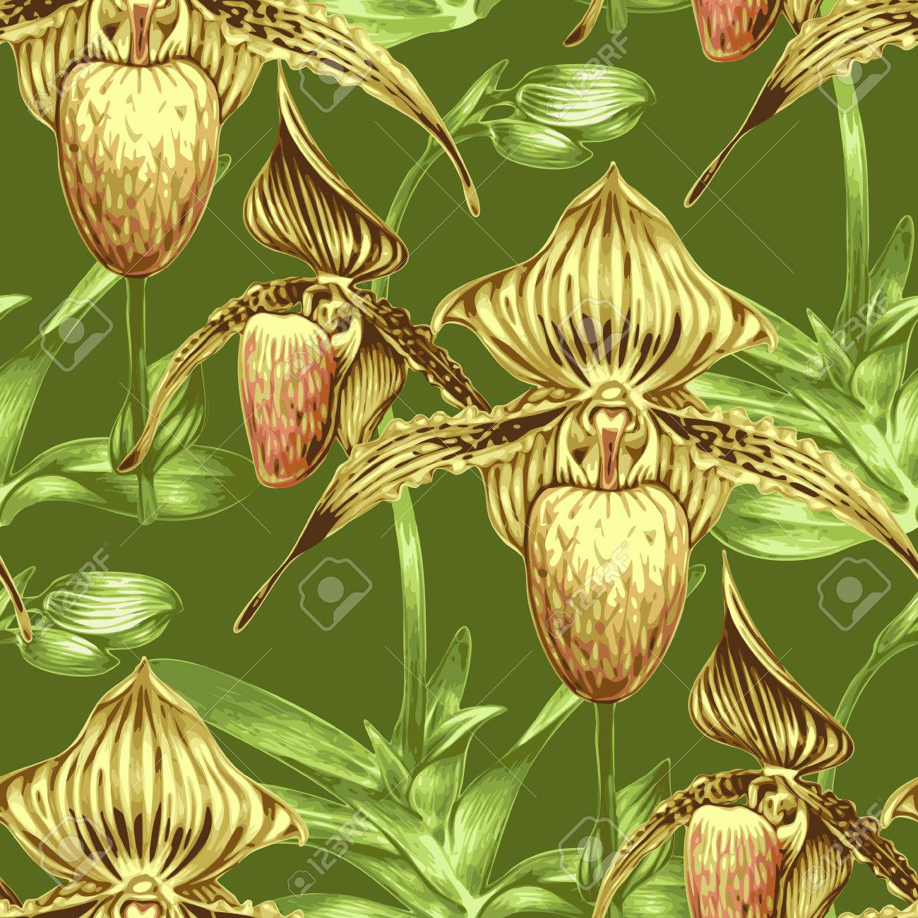 Awesome Pattern With Exotic Tropical Flowers. Orchid. Design For Wallpaper,