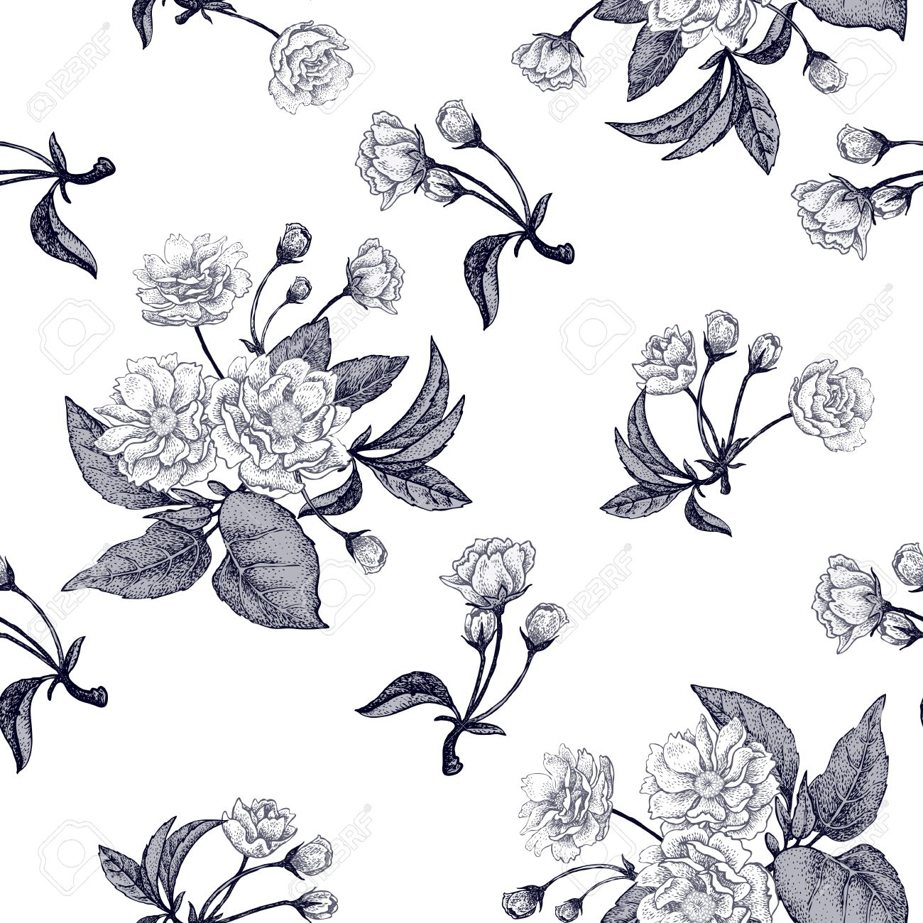 Black And White Vector Background With Flower Chinese Plum Floral