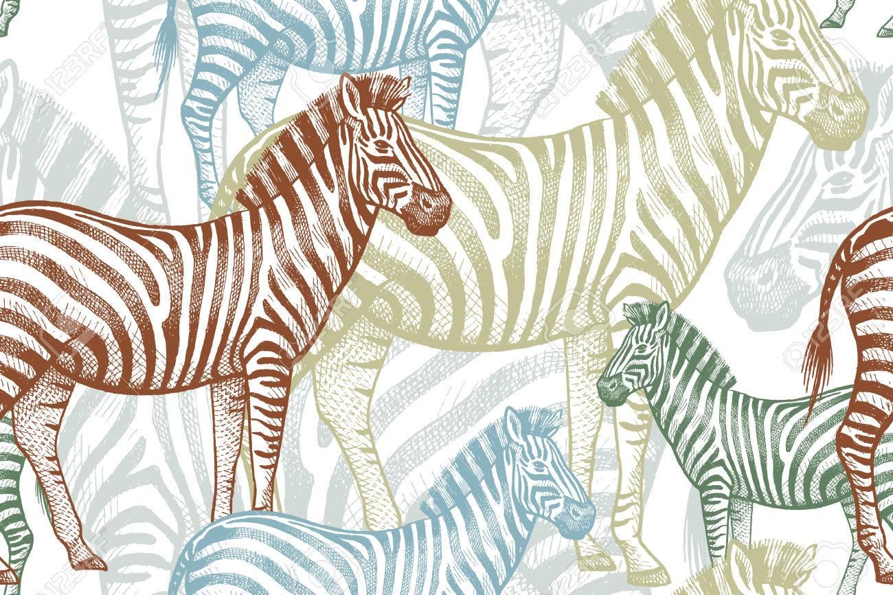 Tolle Zebra Farbseiten Fotos - Malvorlagen Von Tieren - ngadi.info