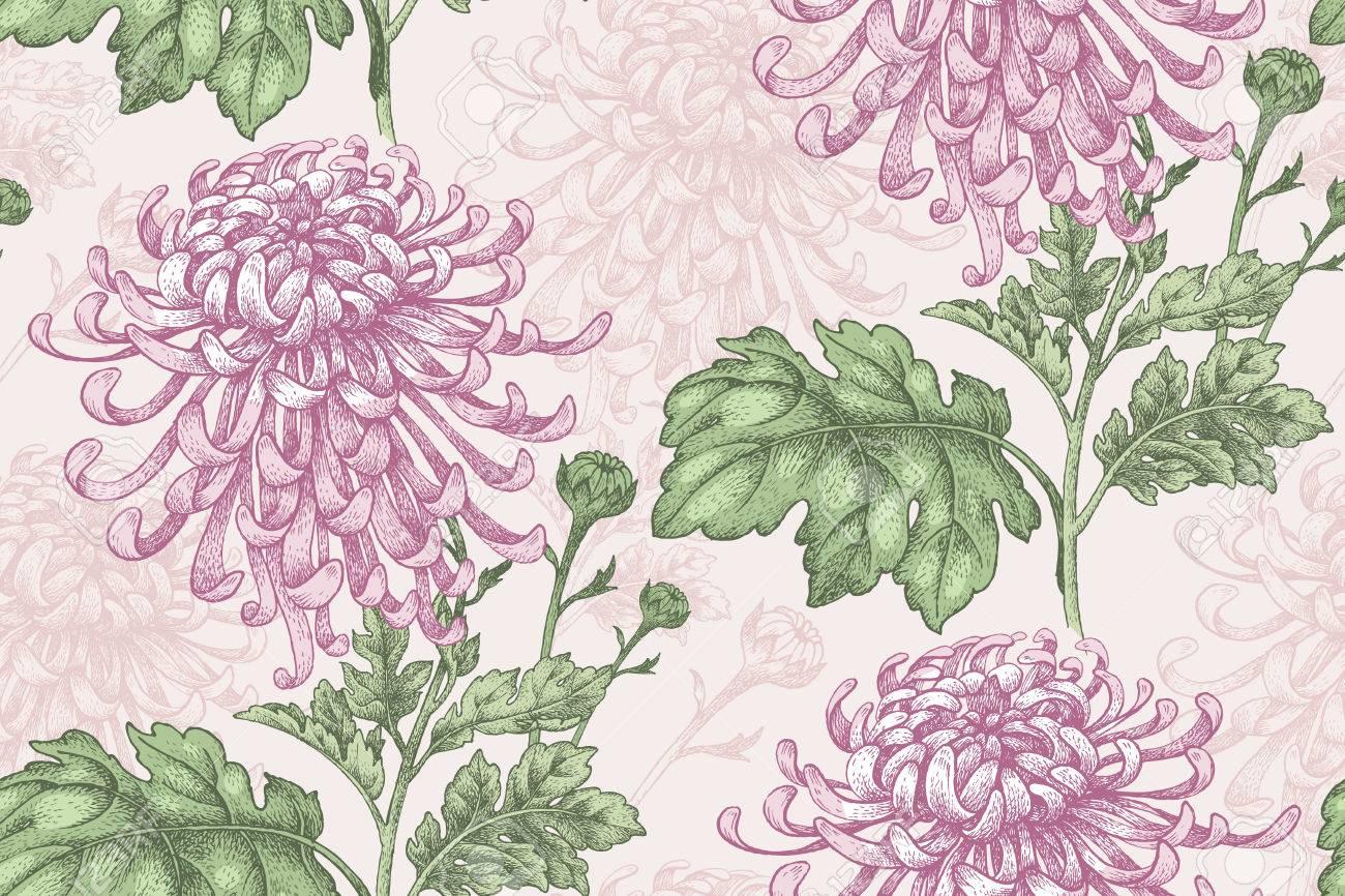 Pink floral seamless vector background floral hrysanthemum seamless - Vector Seamless Floral Pattern Japanese National Flower Chrysanthemum Illustration Luxury Design Textiles