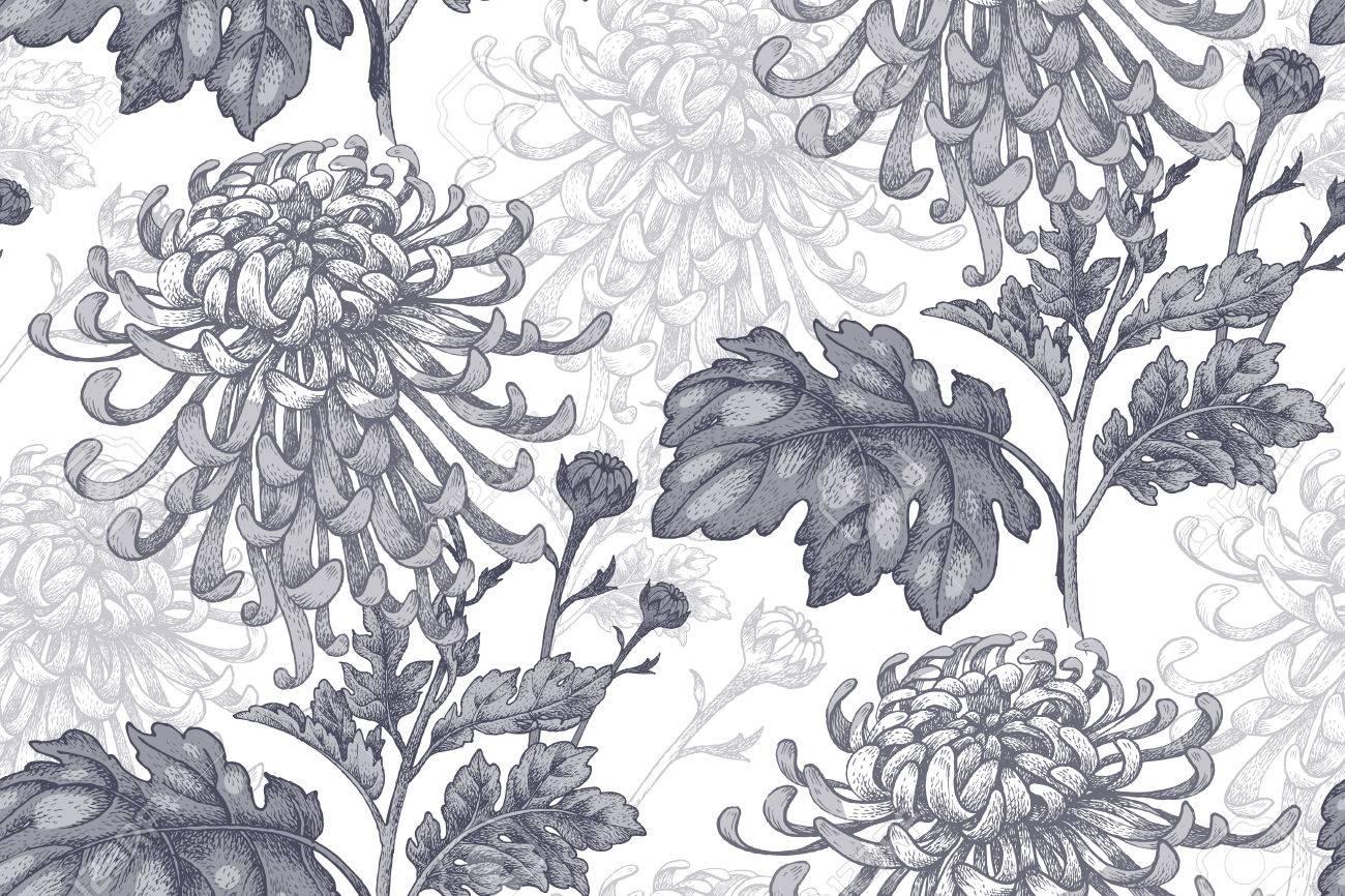 Flowers black chrysanthemum on a white background seamless pattern flowers black chrysanthemum on a white background seamless pattern for a fabric paper mightylinksfo