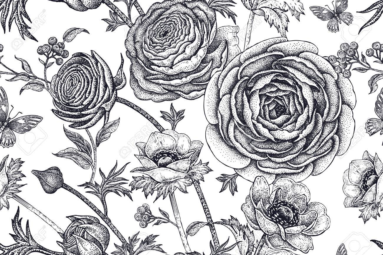Flores De Primavera Patrón Floral Transparente. Dibujo A Mano Las ...