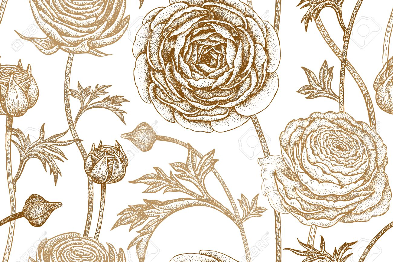 Spring Flowers Seamless Floral Pattern Hand Drawing Garden Plants Buttercup Print Gold Foil On White
