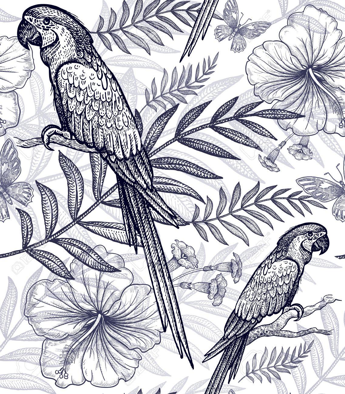 Fleurs Et Motifs Floraux Doiseaux Dessin à Main Levée Noir Et Blanc Plantes Exotiques Branches De Palmier Ananas Hibiscus Papillons
