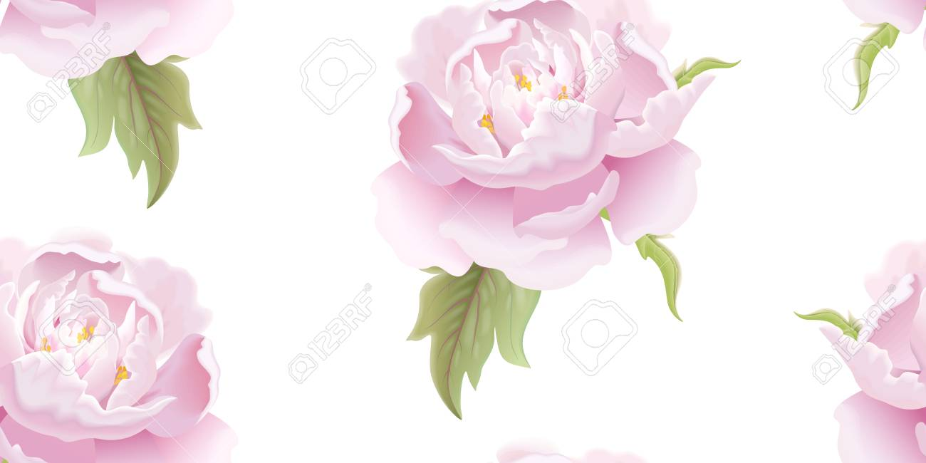Soluzioni Giardino Delle Parole giardino di fiori peonia. motivo floreale senza soluzione di continuità.  modello di illustrazione vettoriale di imballaggio di lusso, tessuti,  carta.