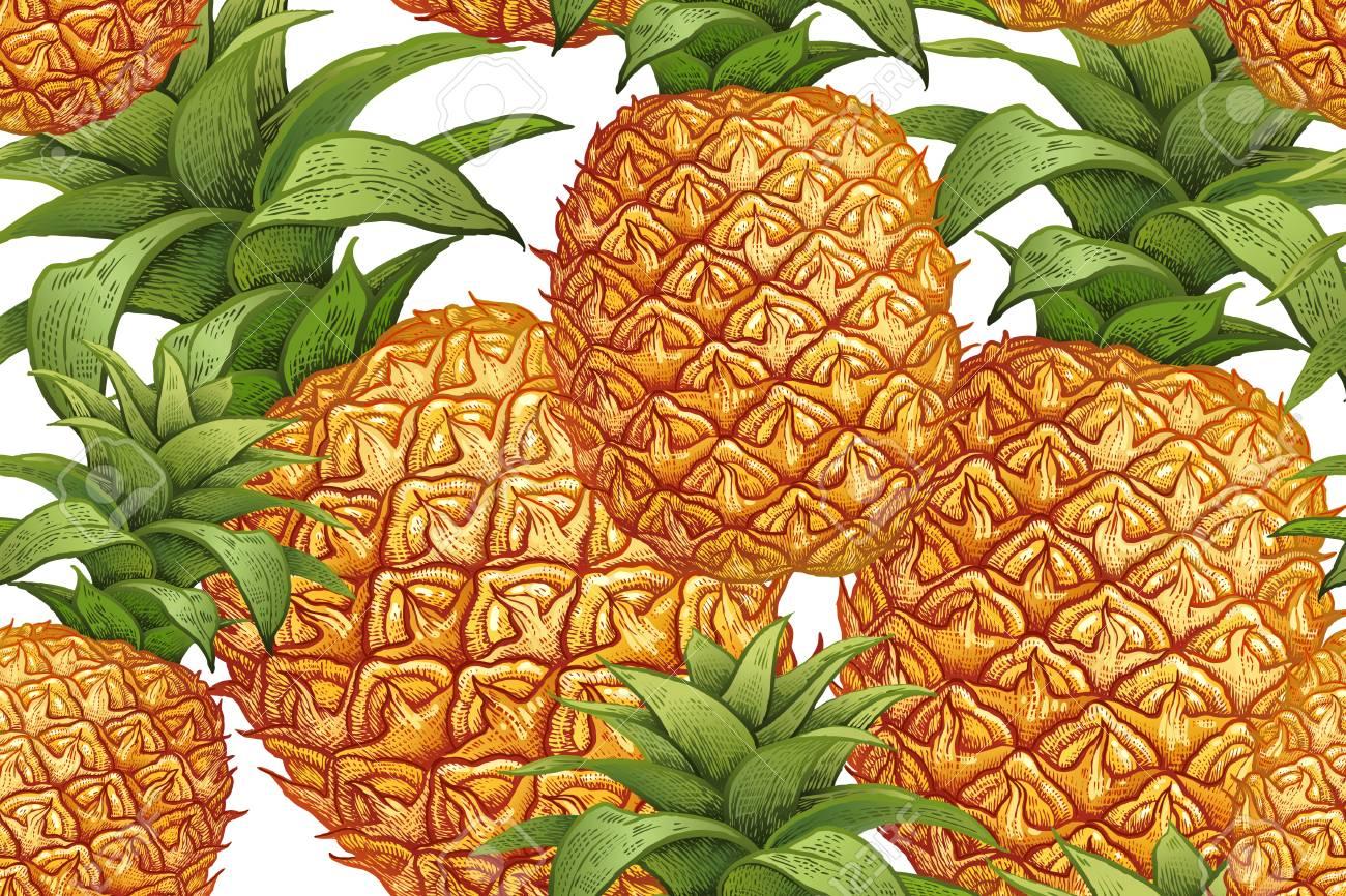 Ananas Auf Weißem Hintergrund. Nahtloses Botanisches Muster Mit ...