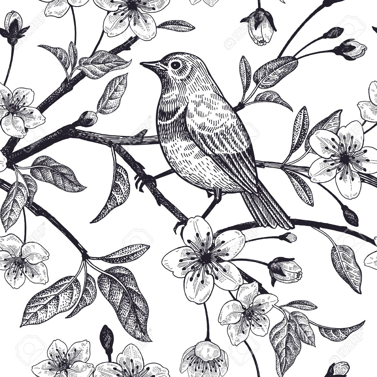 Seamless pattern with Japanese cherry and bird sketch. Vector. Black and white. - 98166011