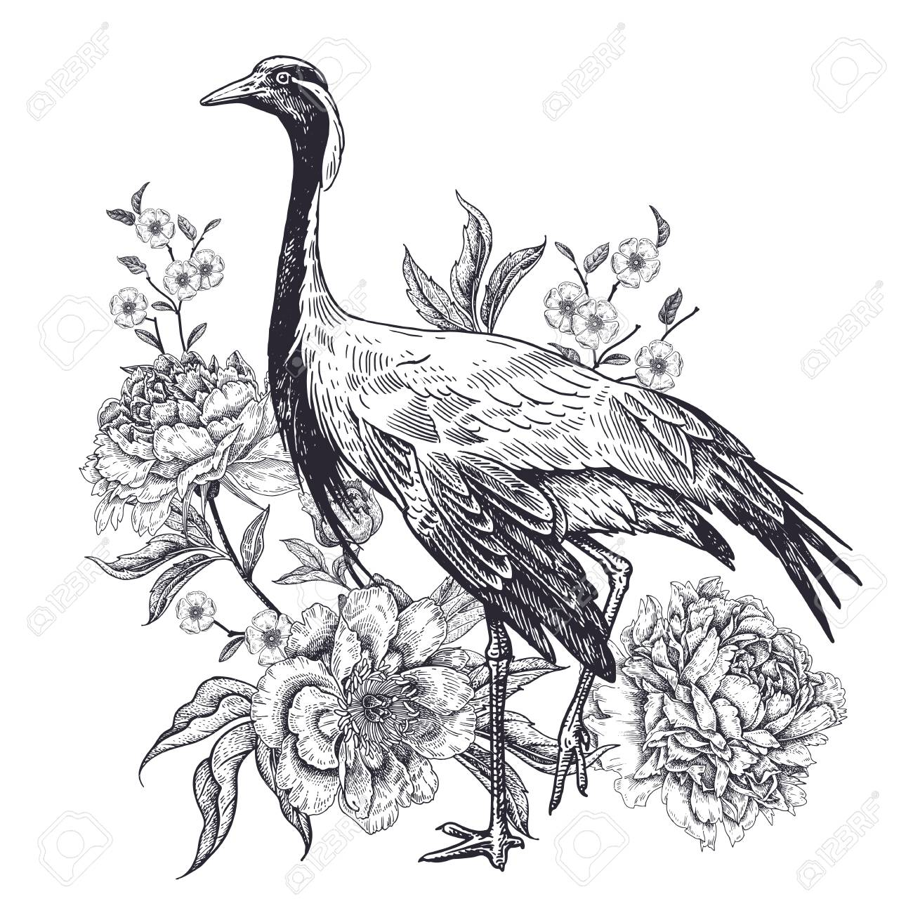 Decoration With Bird And Flowers Realistic Hand Drawing Of Crane