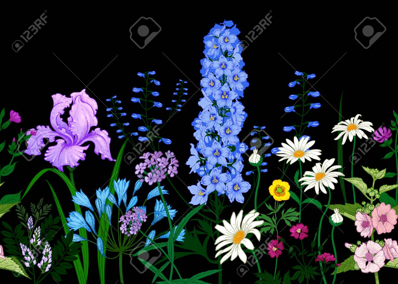 BorderÊwith Wild flowers. Seamless summer pattern with field flowers on black background. Floral background for printing wallpaper, paper, textiles, fabrics. Hand drawing sketch. Fashion illustration. - 126162365