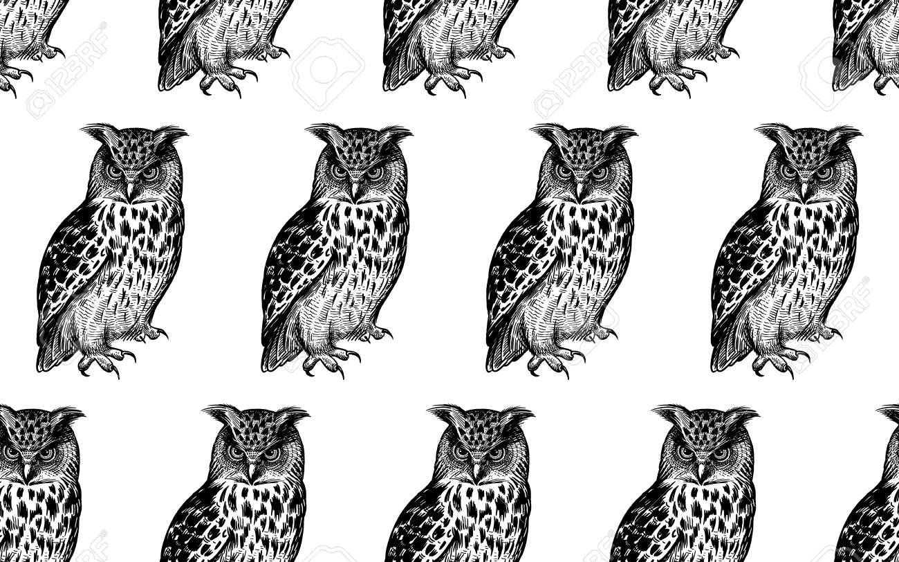 Seamless pattern with owls. Realistic birds. Vector illustration. Predatory forest birds. Sketch hand drawing. Black and white. Vintage. Template for the design of textiles, paper, wallpaper. - 122899763