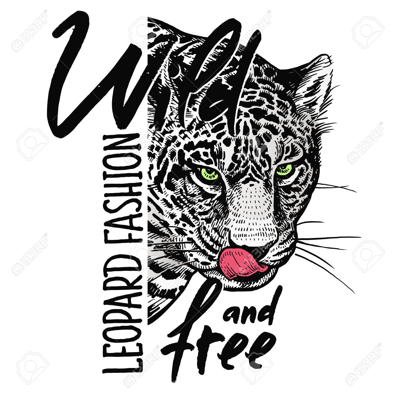 """Muzzle of leopard close-up, skull and inscription """"Wild and free"""". Template for printing on T-shirts, posters, cards. Black, white and red color. Realistic sketch. Beast style. - 122553405"""