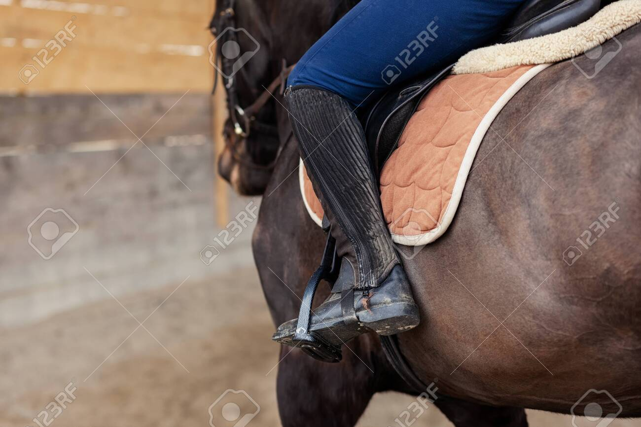 Closeup Of A Woman In Riding Gear Sitting In A Saddle On A Brown Stock Photo Picture And Royalty Free Image Image 141702899