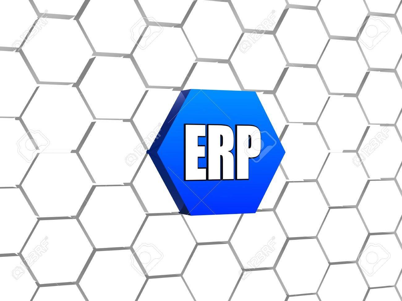 ERP 企業資源計画システム - 3 D...