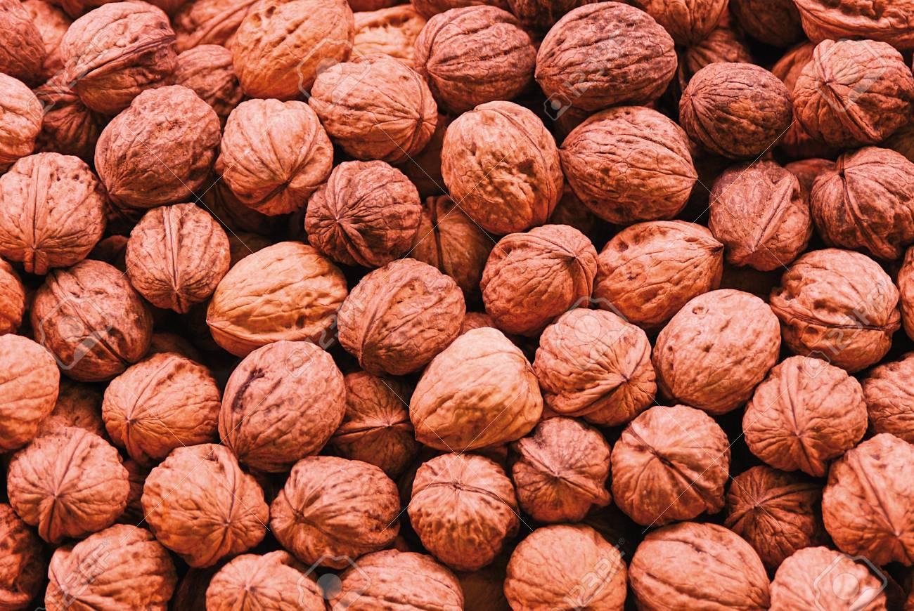 Nuts Standard-Bild - 15265483