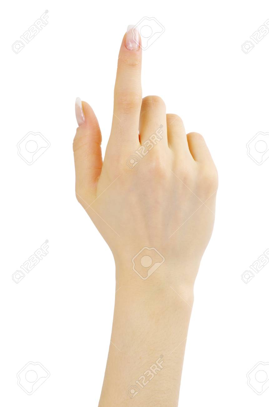 hand isolated on a white background Stock Photo - 13151086