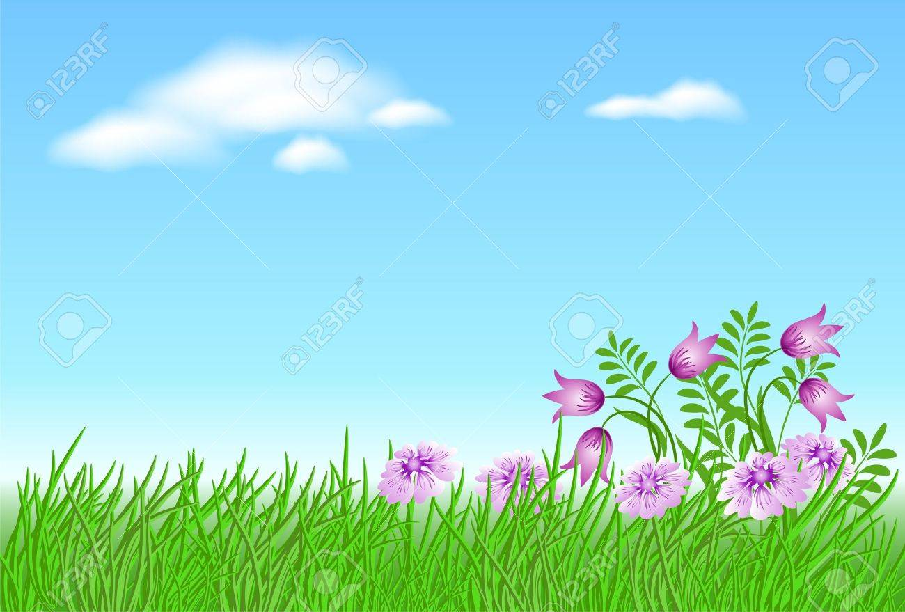 Meadow flowers with green grass and blue sky with clouds Stock Vector - 9380454