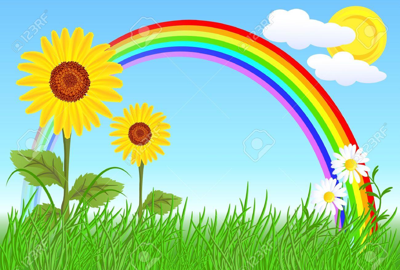 Sunflowers, camomiles, rainbow and blue sky Stock Vector - 9859478