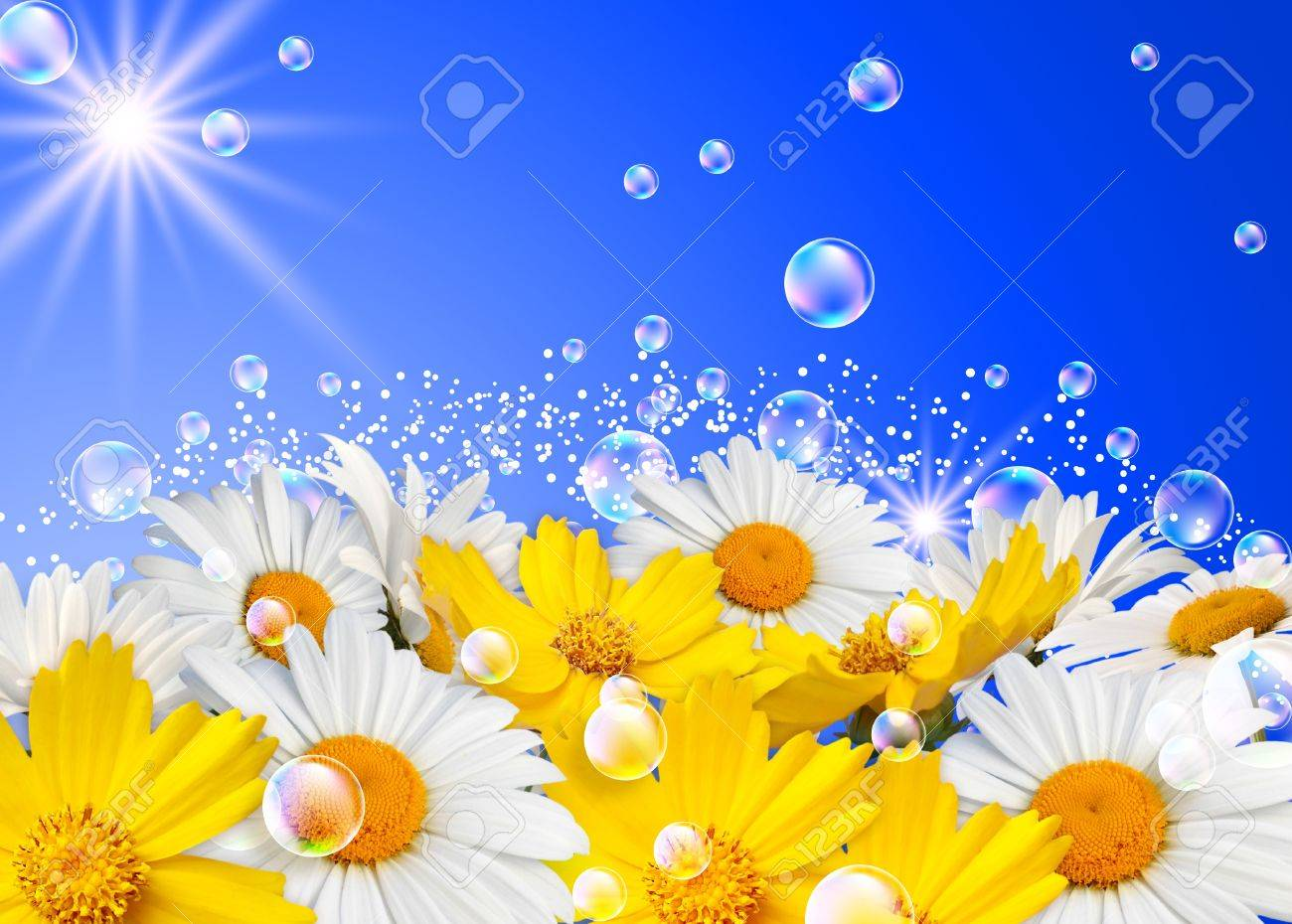 Daisies and bubbles Stock Photo - 11148998