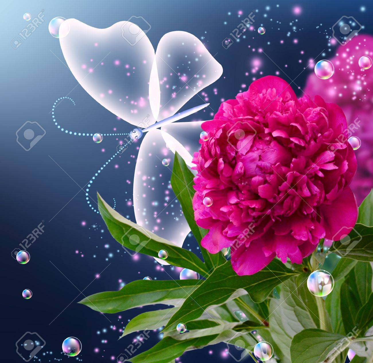 Peony, bubbles and butterfly - 13912984