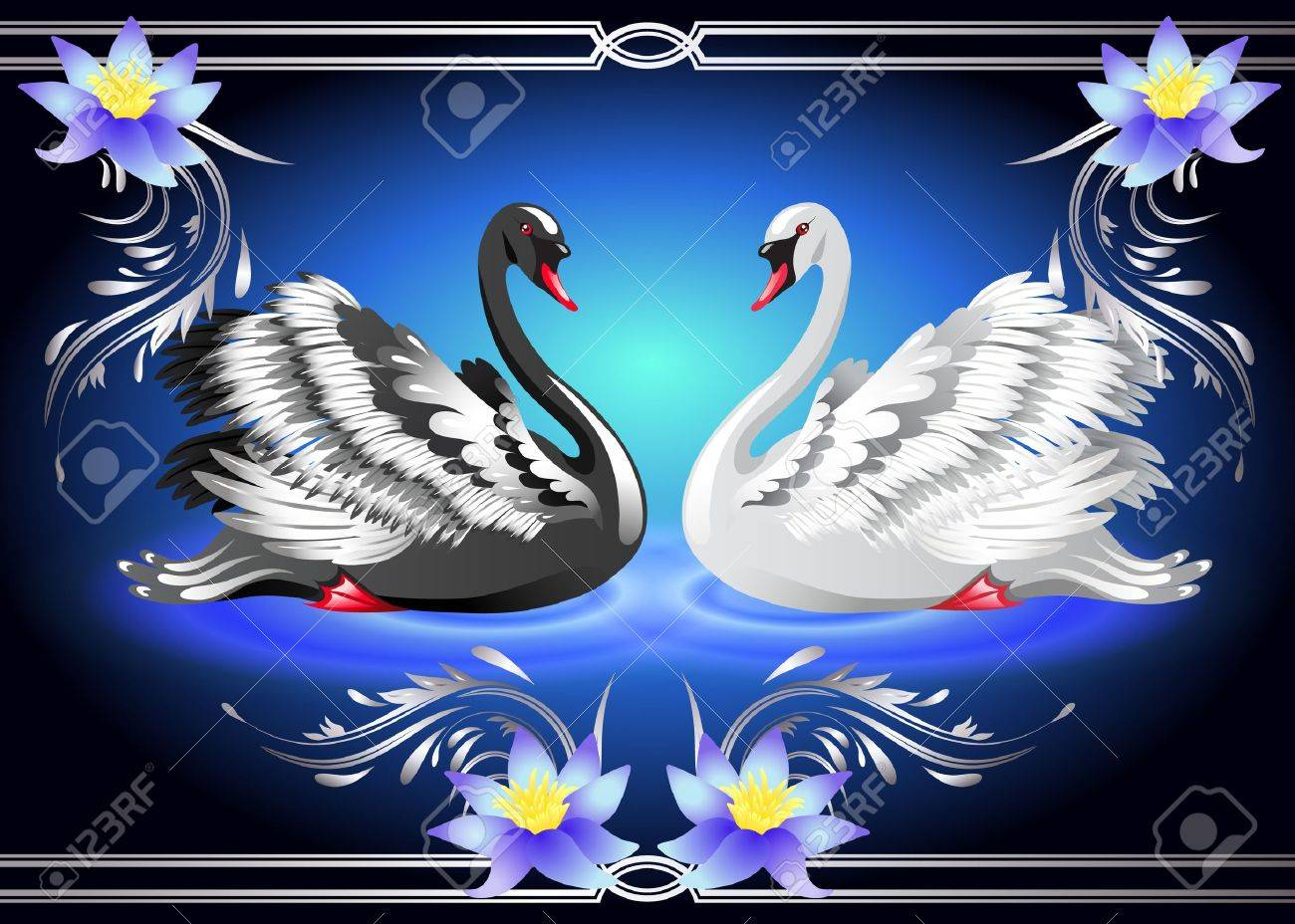 Elegant white and black swan on blue background with lilies - 13912996