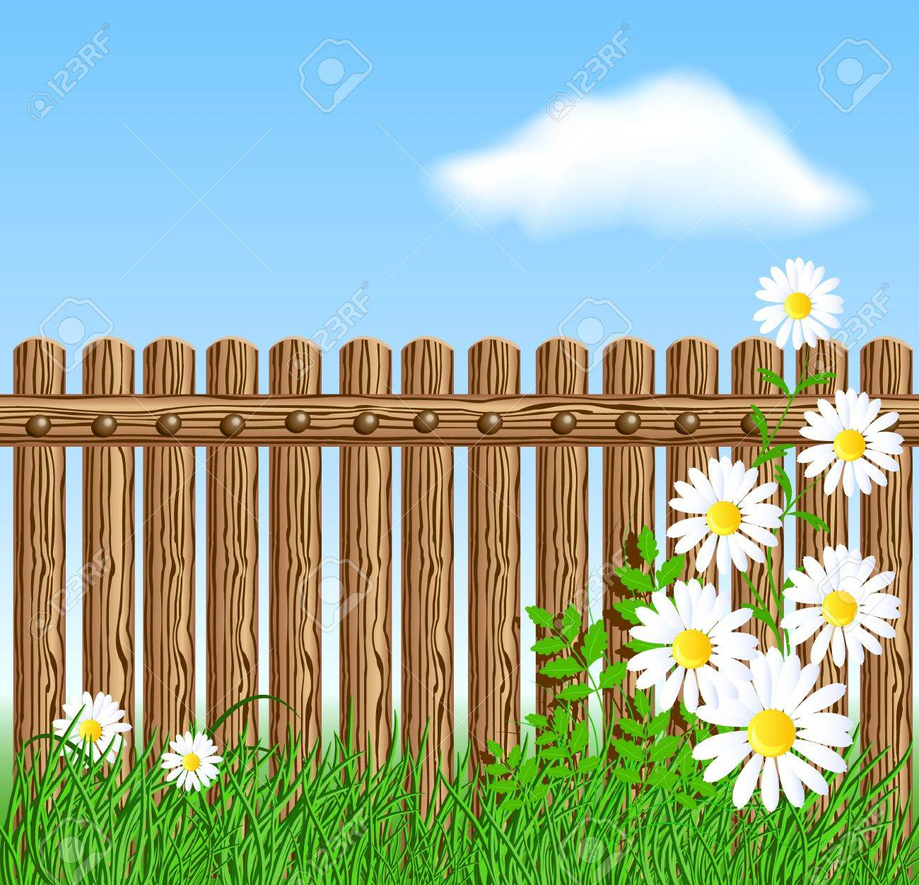 Wooden fence on green grass with daisy against the sky and clouds house - 18352861